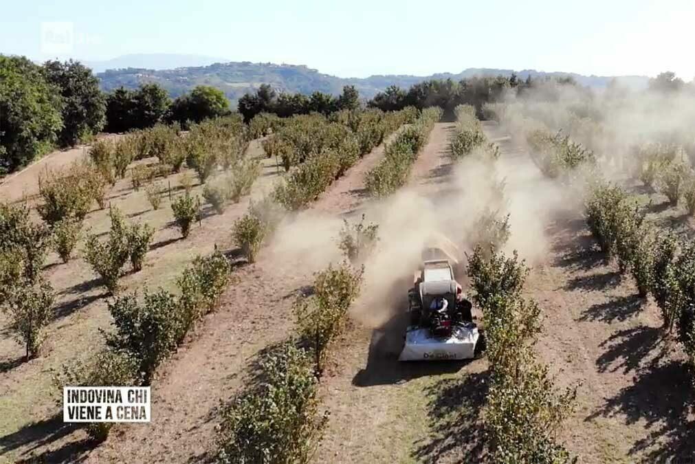 pesticidi vico