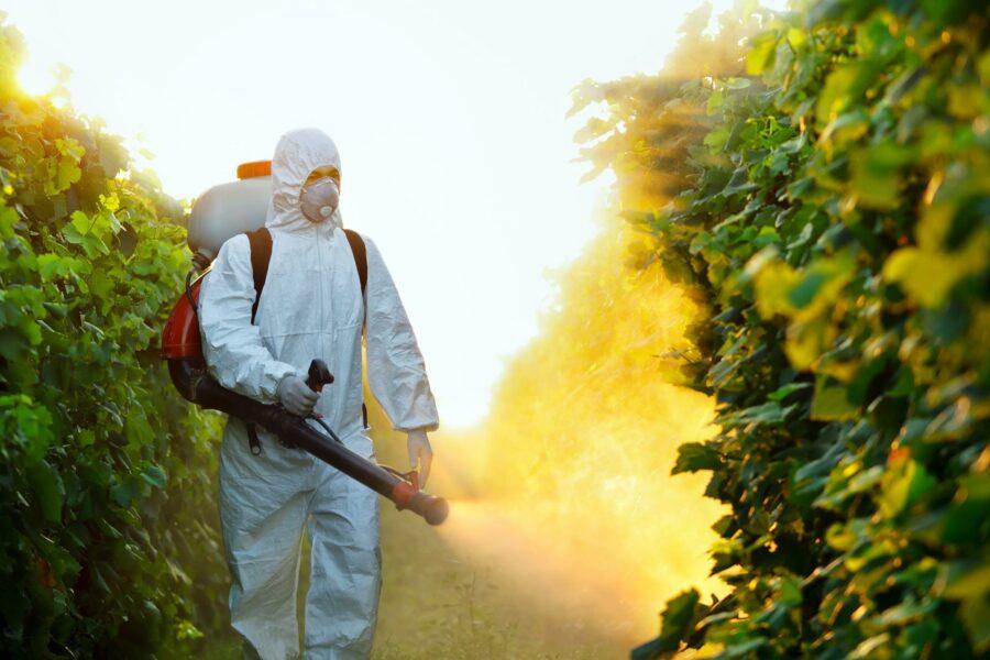 Un milione di firme per ridurre l'utilizzo dei pesticidi in agricoltura